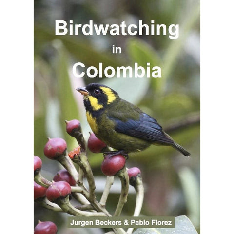 Birdwatching in Colombia (Nov 2013)