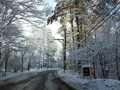 Snow_12010i