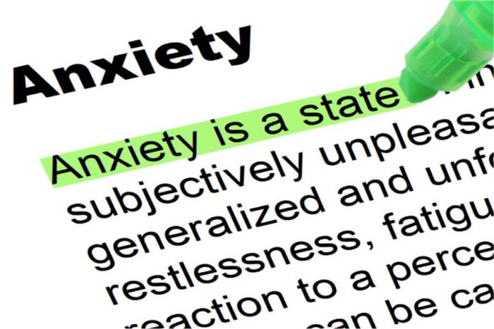 Image result for Anxiety Treatment - The Natural Remedy for Anxiety Relief
