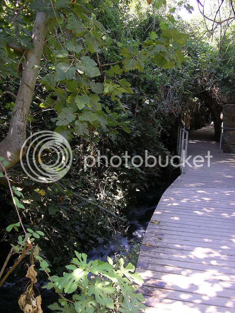 מסלול הליכה למפל הבניאס