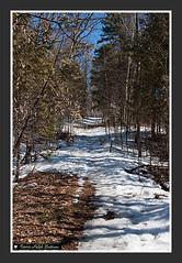 Baird Trail-1