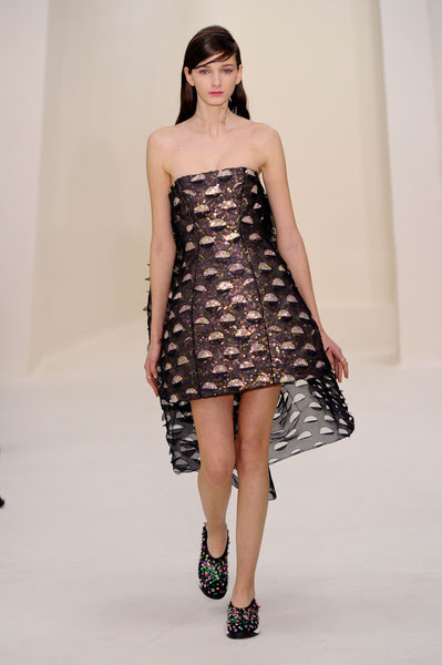 http://www2.pictures.stylebistro.com/it/Christian+Dior+Spring+2014+XrSQOo641J_l.jpg
