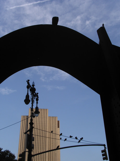 birds and arch