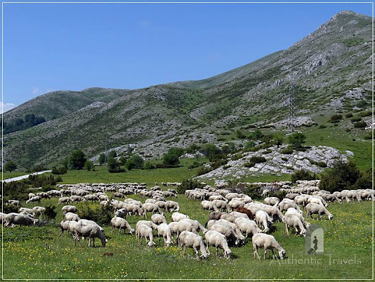 Skopje surroundings and Mavrovo region - Authentic Travels