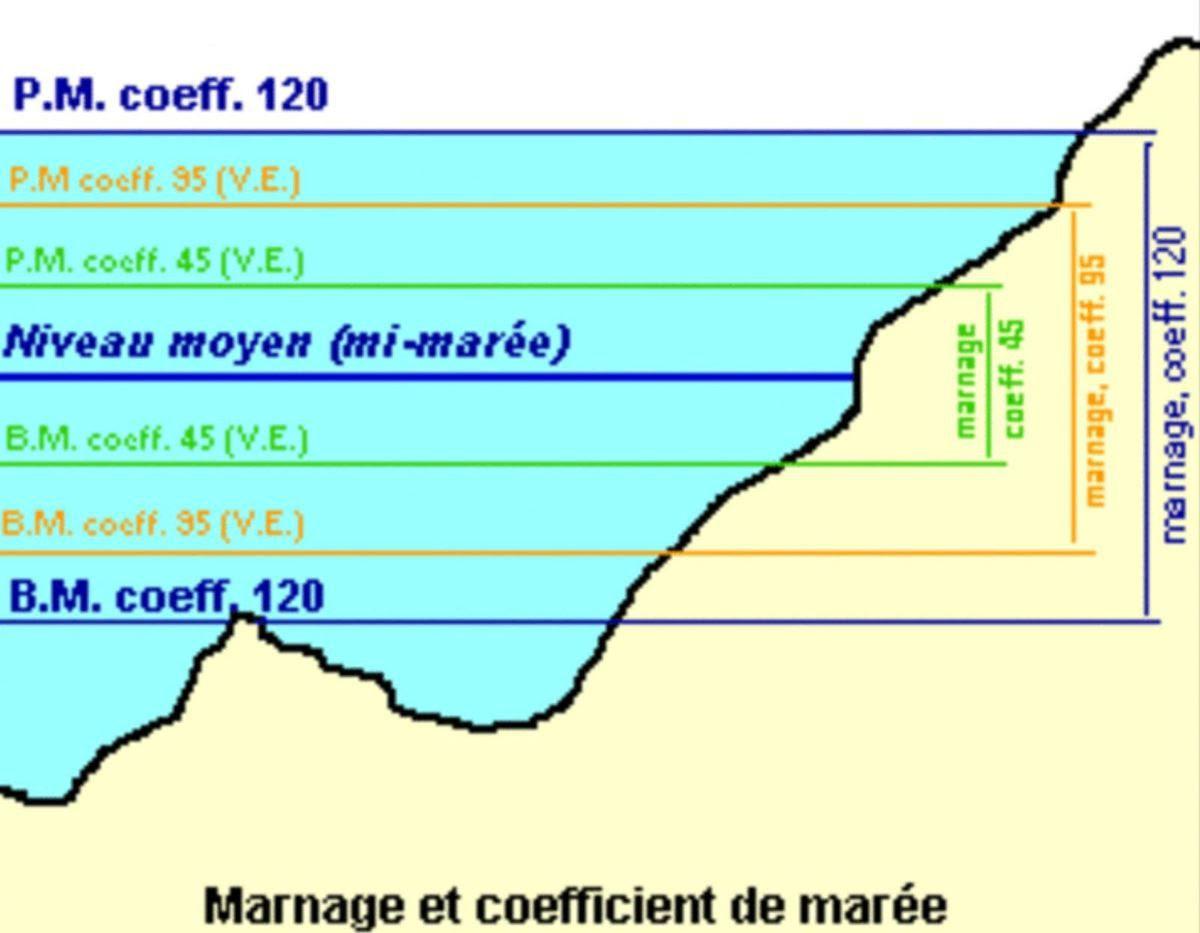 Navigation - Comprendre une carte marine : origines, projection de Mercator, systèmes de références