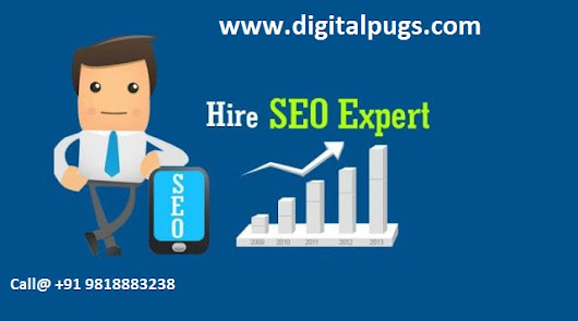 Hire a dedicated seo: ensuring your online business growth | digitalpugs