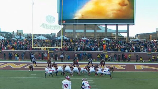 Minnesota uses 'Dramatic Chipmunk' to distract opposing kickers