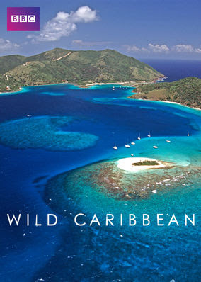 Wild Caribbean - Season 1