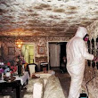Mold & Mildew Prevention from Damaging Your Home