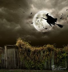 Midnight run at Halloween by *LadyCarnal