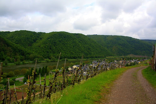 moezel in Eifelgebergte