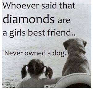 Dog Mom Quotes. QuotesGram