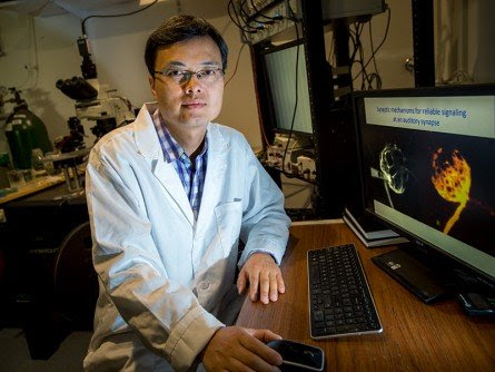 Tulane Researcher Awarded $1.8 Million Grant for Hearing Loss Study - Hearing Review
