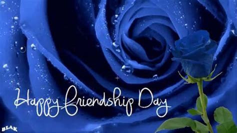 Blue Rose Of Friendship. Free Happy Friendship Day eCards