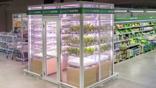 Berlin Startup Infarm Aims To Put Tiny Vertical Farms In Grocery Stores | BioLinked Blog