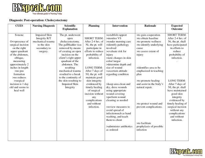 Pes Format Nursing Diagnosis Example | MedicineBTG.com