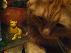 Jasper inspecting action figure Jasper