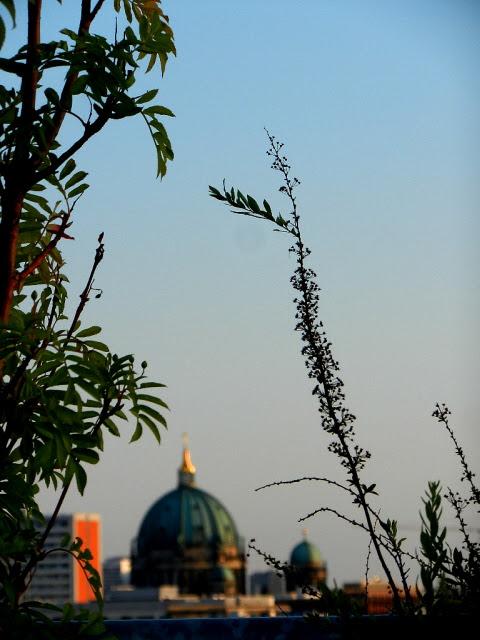 Berlin_2013_331