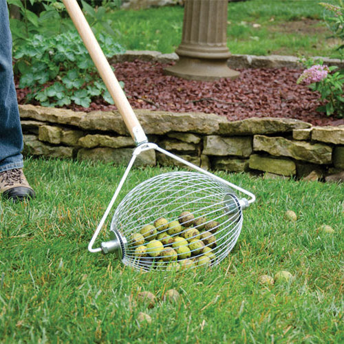Nut Wizard: A Rolling Barrel To Collect Nuts, Golf Balls, Sweet Gum Balls, etc