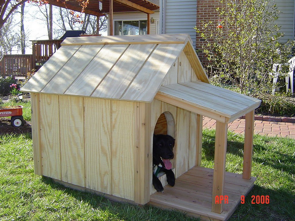 Insulated Dog House – WoodBin