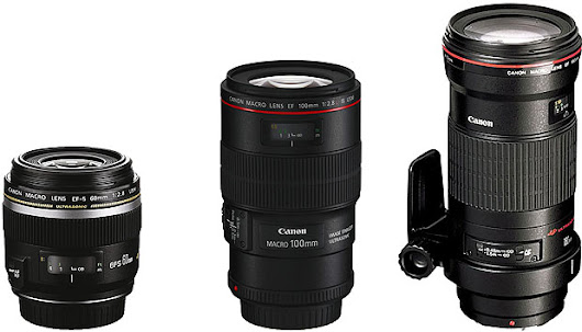 Canon EOS – Chris Bray Creative Tutorial: Canon DSLR Lenses