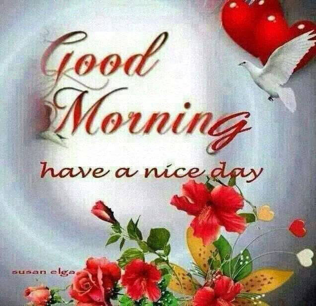 Good Morning Have A Nice Day Image Pictures Photos And Images For