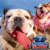 August Slots Tournaments at Liberty Slots Award in Daily Prizes