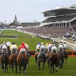Your Complete Guide to the Cheltenham Festival