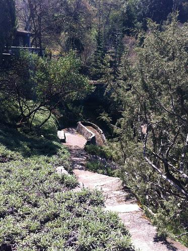 Tilden Regional Park Botanic Garden