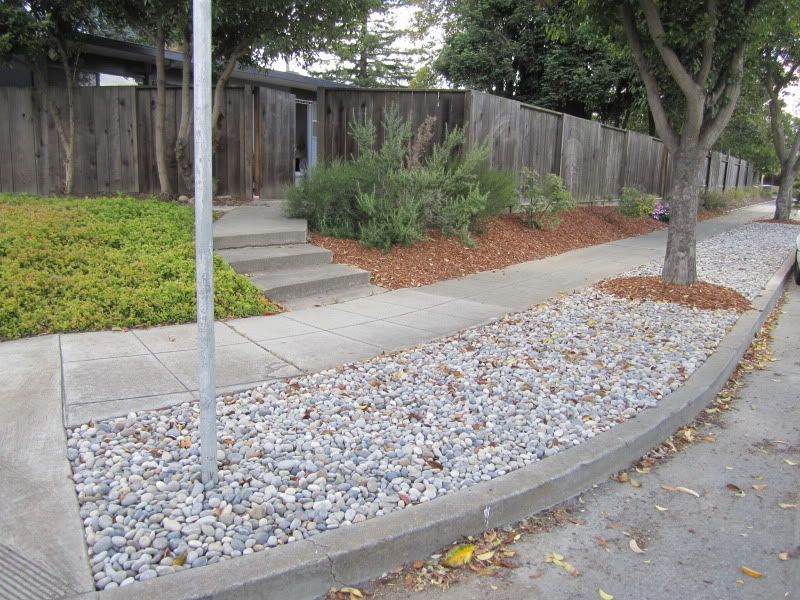 Park Strip After Landscaping Project