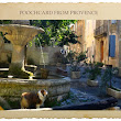 A Traveling Dog Tours the Villages of Provence
