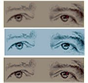 Olhos Alegre