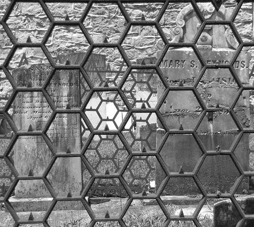 Honeycomb?