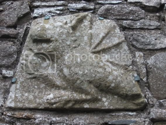 Dragon/Griffin at Slane Abbey Pictures, Images and Photos