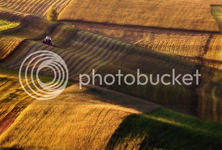 photo Przemyslaw-Kruk-1_zps0adb30c9.jpg