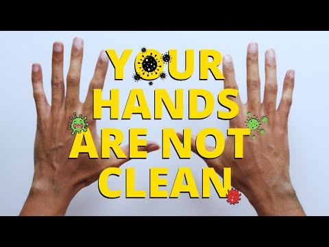 Harmless' Things You Should Really Wash Your Hands after Touching