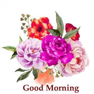 184 Flower Good Morning Hd Images Wallpaper For Whatsapp Facebook
