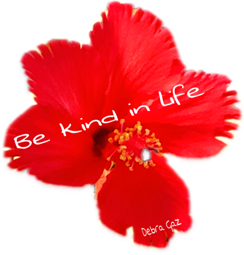 Be Kind in Life