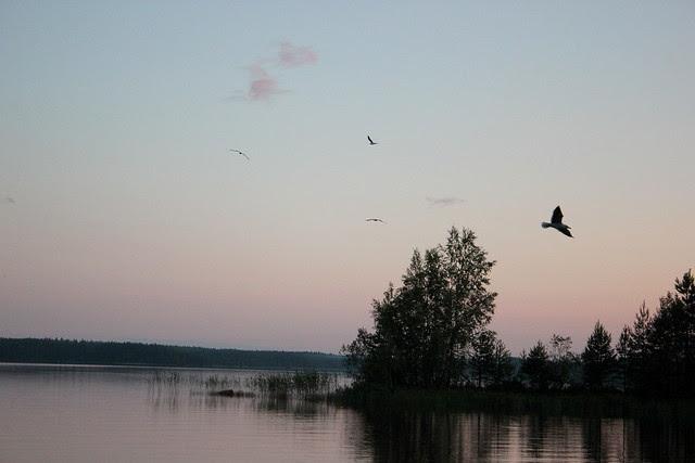 Johannan mökillä 2012 192