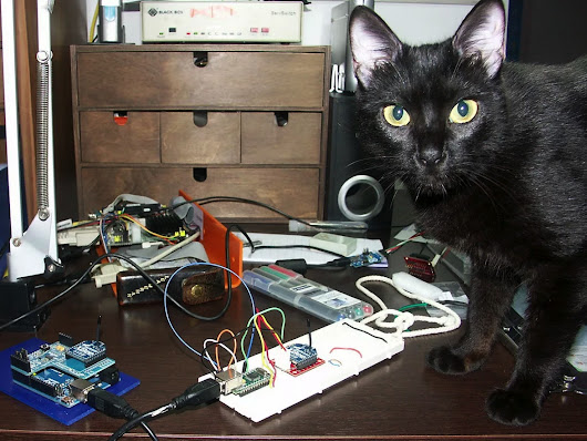 Cats of Engineering - the largest gallery of cats doing engineering @adafruit #catsofengineering