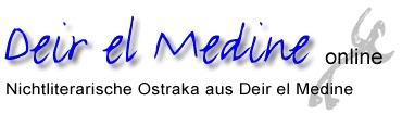 http://dem-online.gwi.uni-muenchen.de/gfx/logo.jpg