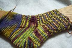Cloning Anemone Sock One