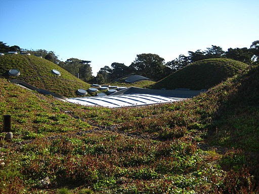 Sustainable Development: Invest in a Green Roof? - Landtech Blog | Civil and Structural Engineers | Fremont CA