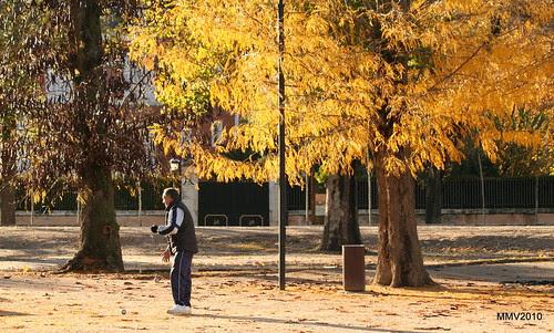 en aranjuez  17-11-2010 17-58-06
