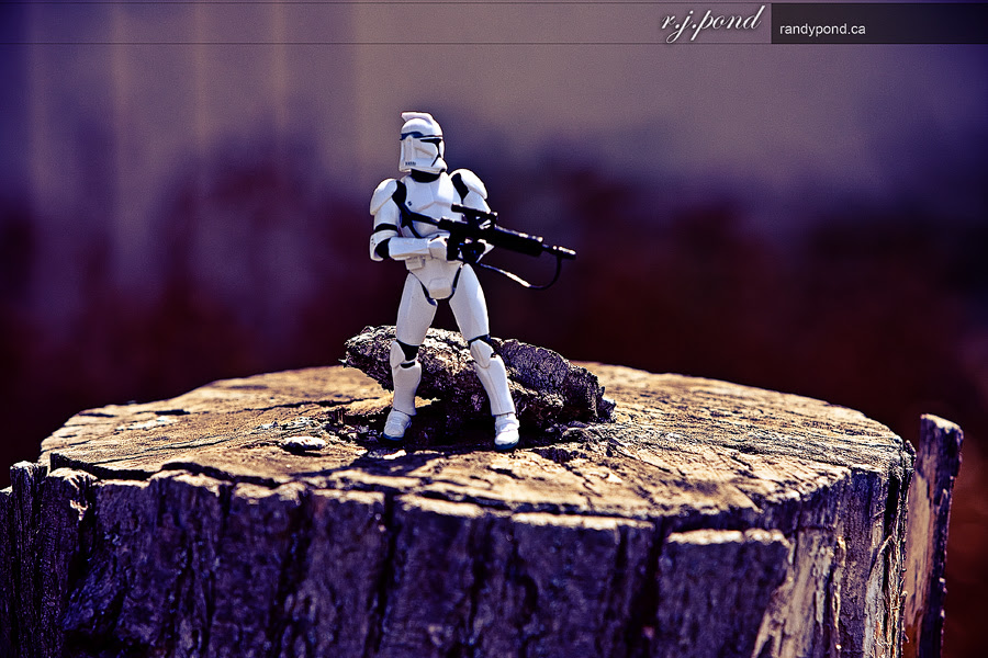 ~ 121/365 Lonely Trooper ~