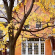 Fall Landscaping Tips For Property Managers - AAOA