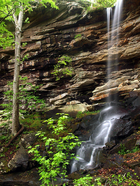 Lonesome Hollow Falls