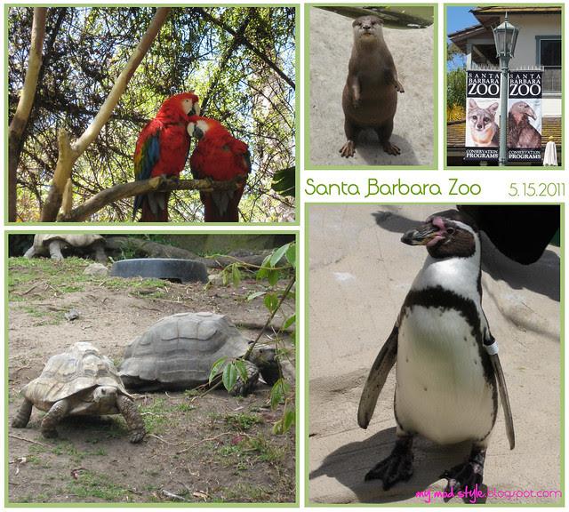 california sb zoo collage1