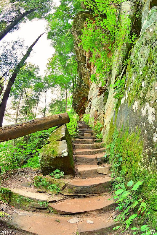 The Stairs At Rock House Hocking Hills Ohio by Lisa Wooten