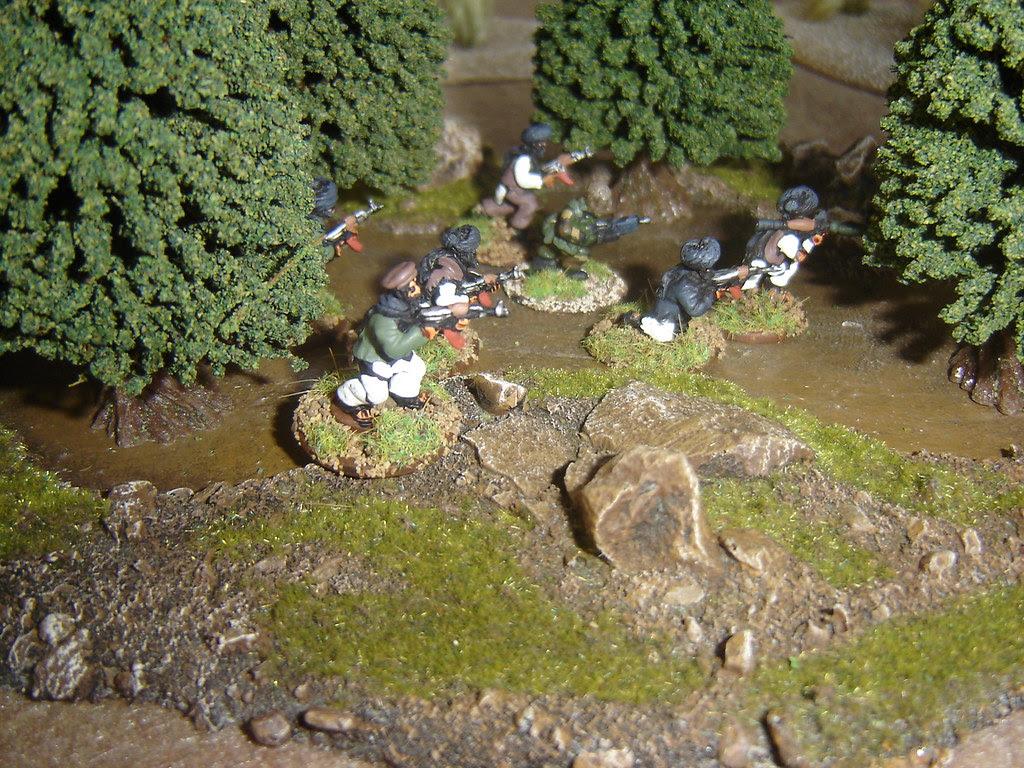 Taliban advance into grove